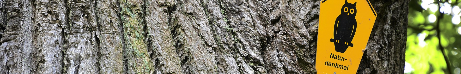 Relaunch Baum mit Schild Naturschutzgebiet Unterseite